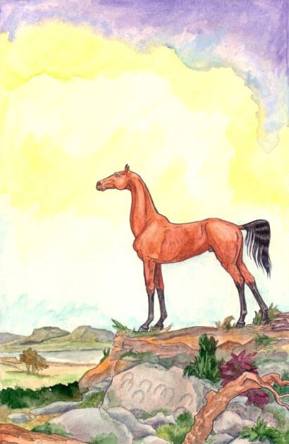 конь рисунок